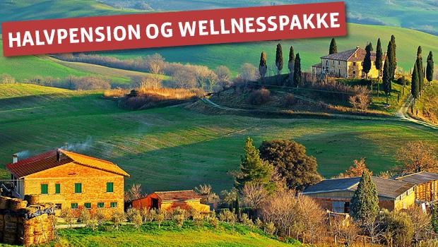 Vin, Wellness og Trøfler i Toscana