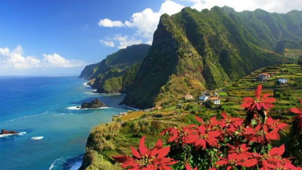 Madeira - Atlanterhavets flydende have