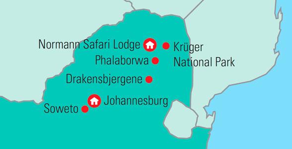 Safari I Sydafrika Fa En Uforglemmelig Rejse Med Dansk Rejseleder