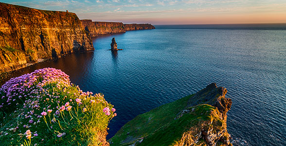 Irland i blomst - oplev Cliffs of Moher