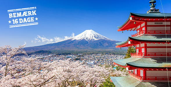d6738327ecf1 Rundrejse med dansk rejseleder igennem Japan