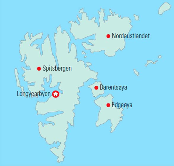 Rejse Til Svalbard Oplev Det Arktiske Norge Med Nordlyssafari