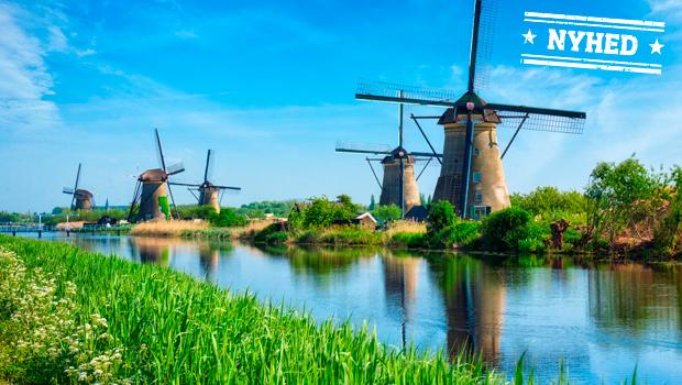 Blomsterflor i Holland