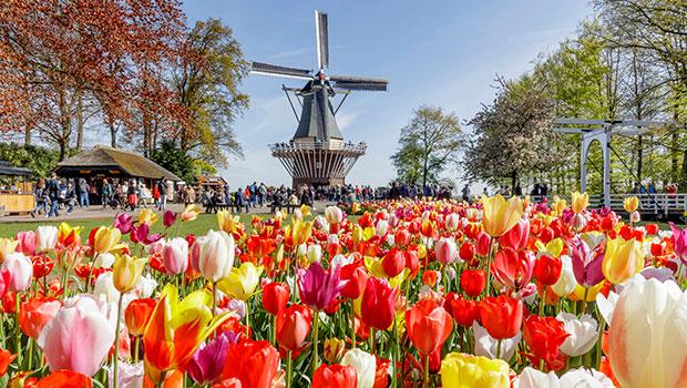 Forårskrydstogt i Holland og Belgien 2021