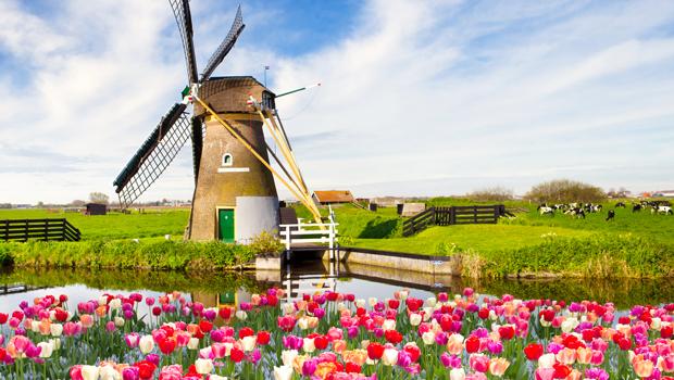 Forårskrydstogt i Holland og Belgien