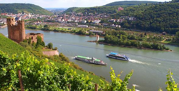 Busrejse Til Rudesheim Tur Med Skon Vin Sejltur Pa Rhinen Og